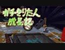 【スプラトゥーン2】ガチきりたん成長記 年始フェス【VOICEROID実況】