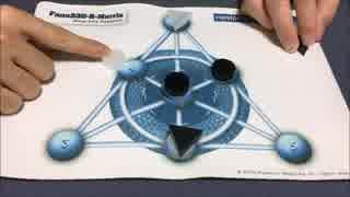 フクハナのボードゲーム対決:Fano330-R-Morris
