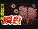 ダンジョン攻略した後に脳みそをシュンコロ[terraria]武器種縛りで世界侵攻 #17 [4人実況]