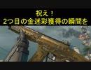 【BO4】メイン武器2つ目の金迷彩獲得 part29【ブサボでGO】