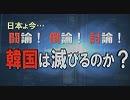 第33位:【討論】韓国は滅びるのか?[桜H31/3/23]