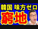 【韓国 速報】韓国高官が米国の関税措置に対抗する為に日本を巻き込む発言を炸裂!露骨に日和って味方ゼロ!韓国終わりだな…海外の反応『KAZUMA Channel』