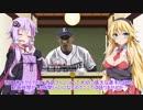 第67位:西武ファンのゆかりさん2019 3月号【VOICEROID解説】 thumbnail