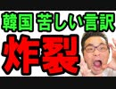 【韓国 速報】文在寅と韓国政府に特大ブーメラン!野党に突っ込まれ苦しい言い訳でパニック状態!どうすんのこれ…海外の反応『KAZUMA Channel』