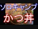 ソロキャンプ かつ丼