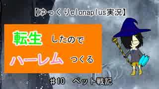 【ゆっくりelonaplus実況】転生したのでハーレム作る10