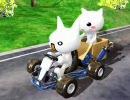 2ちゃんねるレース(転載)