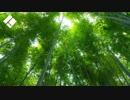 【東方アレンジ】Mr.Ash(原曲:エクステンドアッシュ)