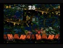 【RTA】スコークスライド(4-3) 1st Bonus 28クリア安定方【スーパードンキーコング2】