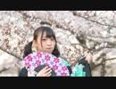 【ここあ】千本桜 踊ってみた【桜の下で】