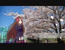 【嘘音クロumbrella】桜日和【UTAUカバー】+UST