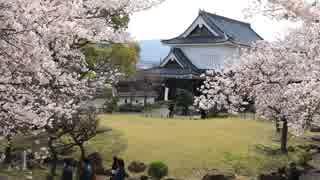 春の京都(2019/4/6,4/7)