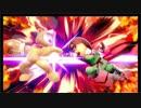 大乱闘スマッシュブラザーズSPECIAL - Mii Fighter Girls(3)