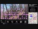 第41位:【ゆっくり】n番煎じの陣場山RTA【リアル登山アタック】(生藤山経由) thumbnail