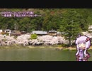 【ゆっかり車載】#00 試作動画~下北山スポーツ公園 花見ツーリング~