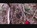 (番外編)変態忍者の、狩猟&有害鳥獣駆除従事活動記・その70+