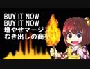 【東方メロコアアレンジ】BURN IT UP!! (仮歌ラフミックス版ver)[原曲:判読眼のビブロフィリア]