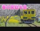 【乗ってみた】菜の花と桜に囲まれて@いすみ鉄道