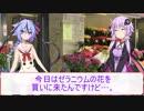 第65位:【劇場】4/24花屋鳴花【ゼラニウム】