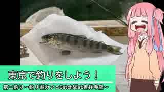 東京で釣りをしよう! ~第二回Catch&Eat吉祥寺店~