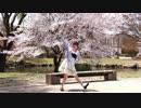【米粉】 メランコリック 踊ってみた C.S.Portリアレンジ 【平成最後の桜】