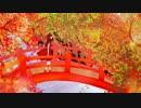 【にゃるた】秋桜-コスモス-【歌ってみた】