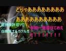 【MHXX】令和一発目はお前だ!! 超特殊許可ソロ 白疾風ナルガクルガ