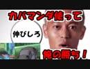 【実況】カバマンダ使ってケイスケホンダしてみた!【ポケモンUSM】【ボーマンダ】
