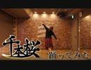 【珍味。~こころ。~】千本桜を踊ってみた【20歳最後の舞】
