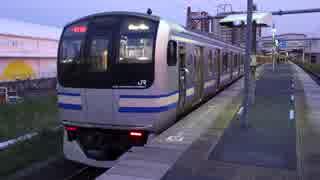 浜野駅(JR内房線)を発着する列車を撮ってみた