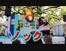 カープの猛練習?ハッピーくまモンでノックの猛特訓!!2019ひろしまフラワーフェスティバル!!