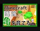 葛葉、マイクラで亀を育てる