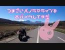 【ゆかり車載】つまごいパノラマラインをおバイクしてきた【VTR250】