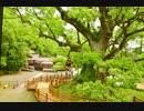 【SEROW】バイクで神社を巡ろう8~蒲生八幡神社~