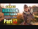 [作業用実況]Horizon Zero Dawn™ Part12