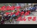 【ゆっくり車載】道の駅でマンボウが死んでる【part34】