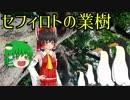 【ファンキル】樹登ろうぜ!下手の横好きがゆっくり実況プレイ Part5【セフィロト】