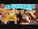 早川亜希動画#619≪GW、和歌山を食べ尽くし!(写真&動画公開)≫