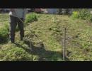 2019年3月18日:畝幅の変更作業・備中鍬、レーキ、スコップの使い方【畝作り・農具の使い方】