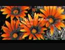 【IA ROCKS - Original】Brilliant Bloom【踊りませんか】