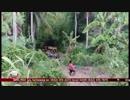 Pampasaherong jeep nahulog sa bangin sa Albay; 10 patay | TV Patrol