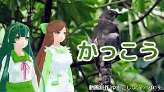 【緑咲香澄・東北ずん子】かっこう【CeVIO・VOCALOIDカバー】