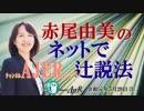『第24回平成最後の統一地方選挙(前半)』赤尾由美 AJER2019.5.29(3)