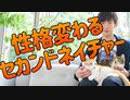 第24位:【性格が変わる】セカンドネイチャーの身に着け方 thumbnail