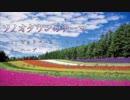 【バンブラP】ソノオタウンのテーマ【ポケモンDP】