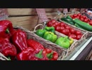 Food Market - Peppers 齋藤允賀