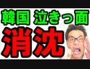 韓国の最新ニュース速報!貿易も完全に危機だから、もう中国の一部だな!情けない姿に日本と世界も目が点に…海外の反応『KAZUMA Channel』