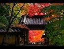 【ニコニコ動画】滋賀に行きたくなる動画を解析してみた