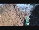【二度と行かねぇ!】ミクと登る表妙義縦走路Part.2