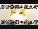 商品紹介YouTuberになる為の教科書的動画Ⅲ